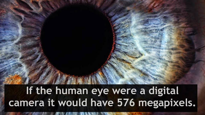 What is the megapixel of Human Eye?